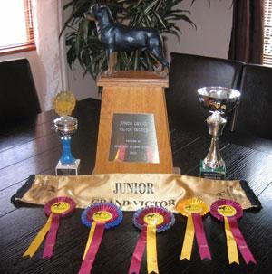 Legion Cypress Awards